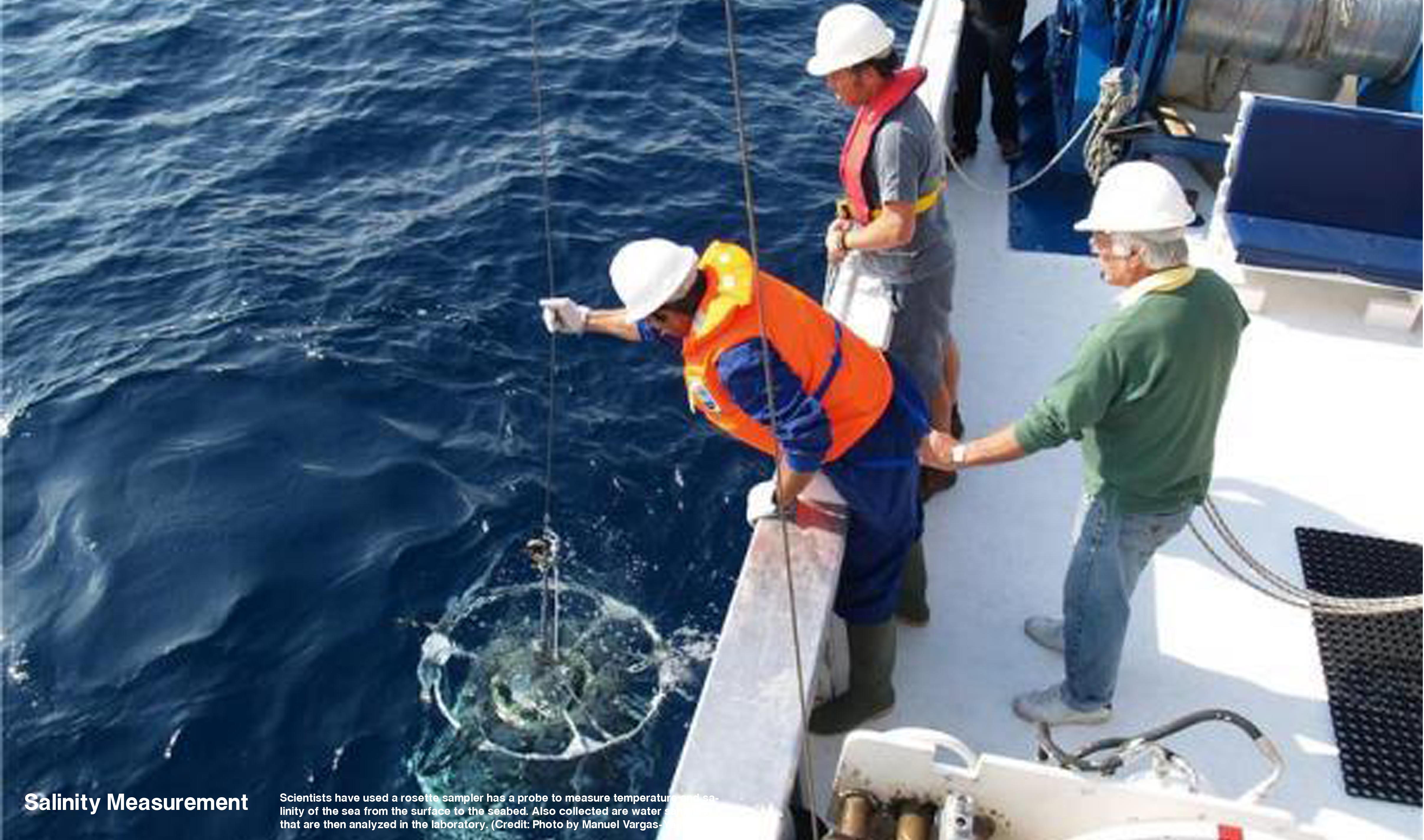 профессии связанные с рыбалкой