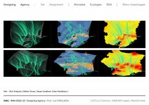 [Designing Agency] Castillo Navarro, Karekar Yogesh, Malaga Peter - A3_02