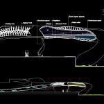 rib section
