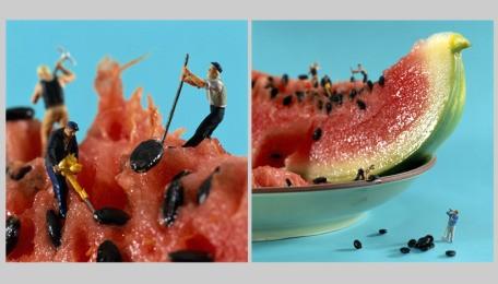 minimen-watermelondig