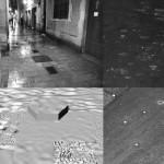 01_RAIN copy