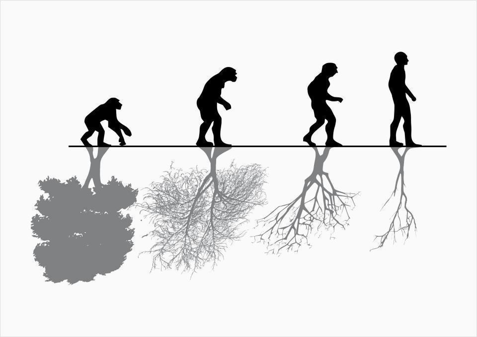 an experiment to evaluate human behavior under natural environment A natural experiment is defined as an empirical study in which the control what are natural experiments and how the 6 most common functions of human behavior.