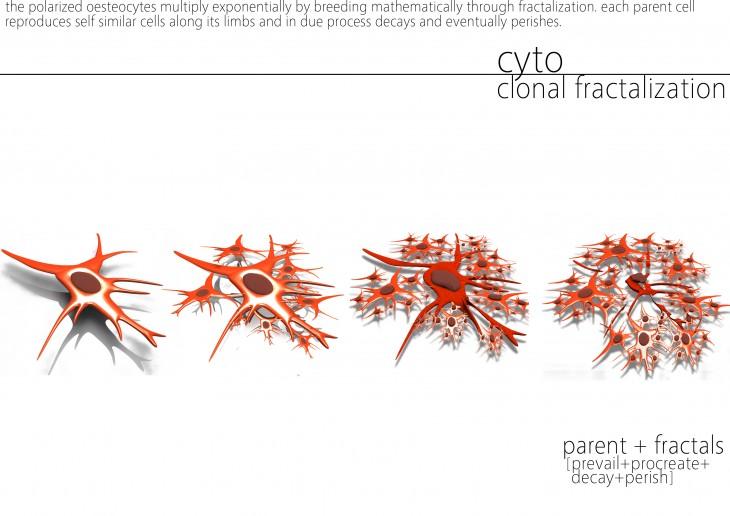 06 - fractalization