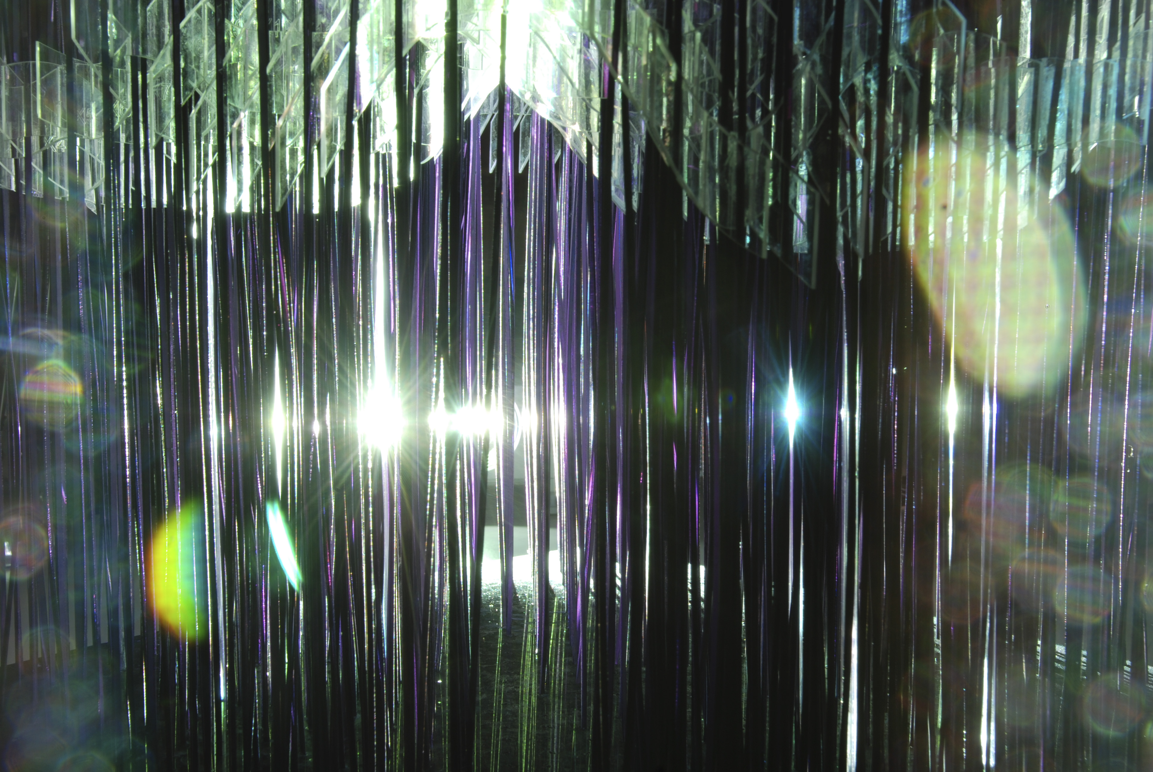 Forest Vibrations – IAAC Blog