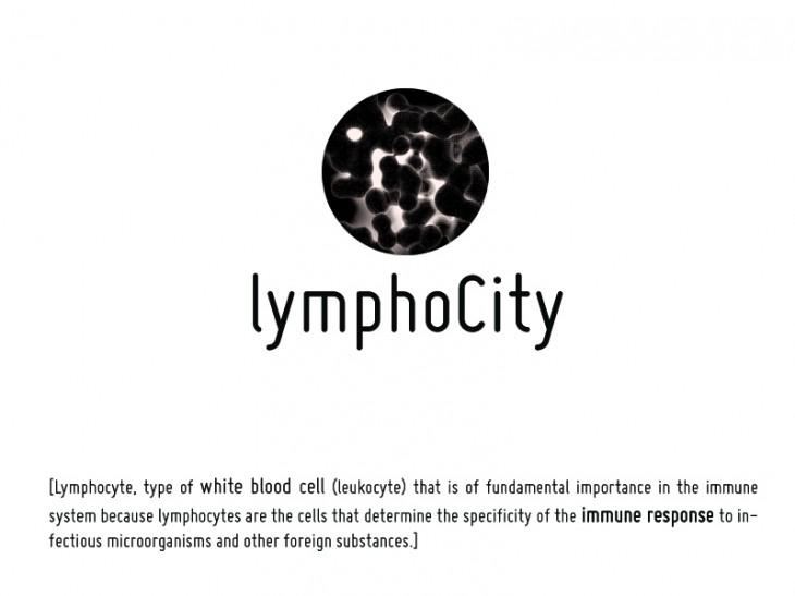 lymphocity