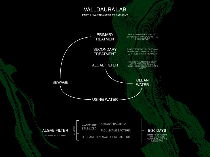 Algae application
