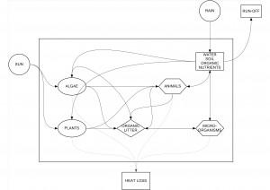METABOLIC DESIGN2