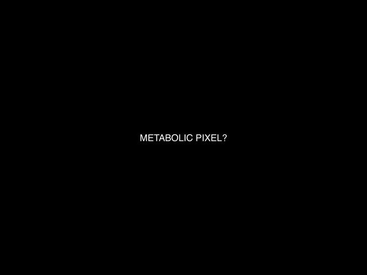 Metabolic Pixel