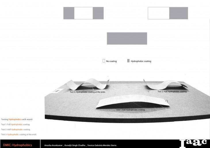 Midterm_Presentation_Hydrophobics-6