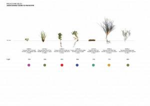 Productive Landscape_Page_41