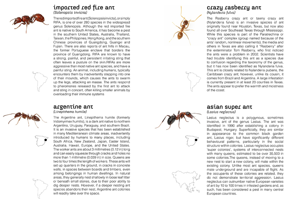 electric ants00