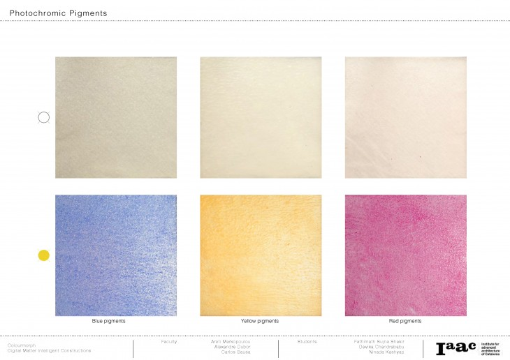 Colourmorph Blog Post_Page_06