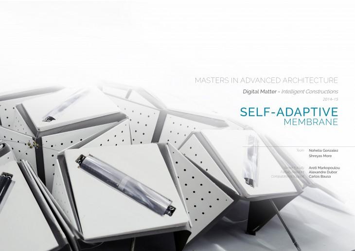 Self-adaptive Membrane1