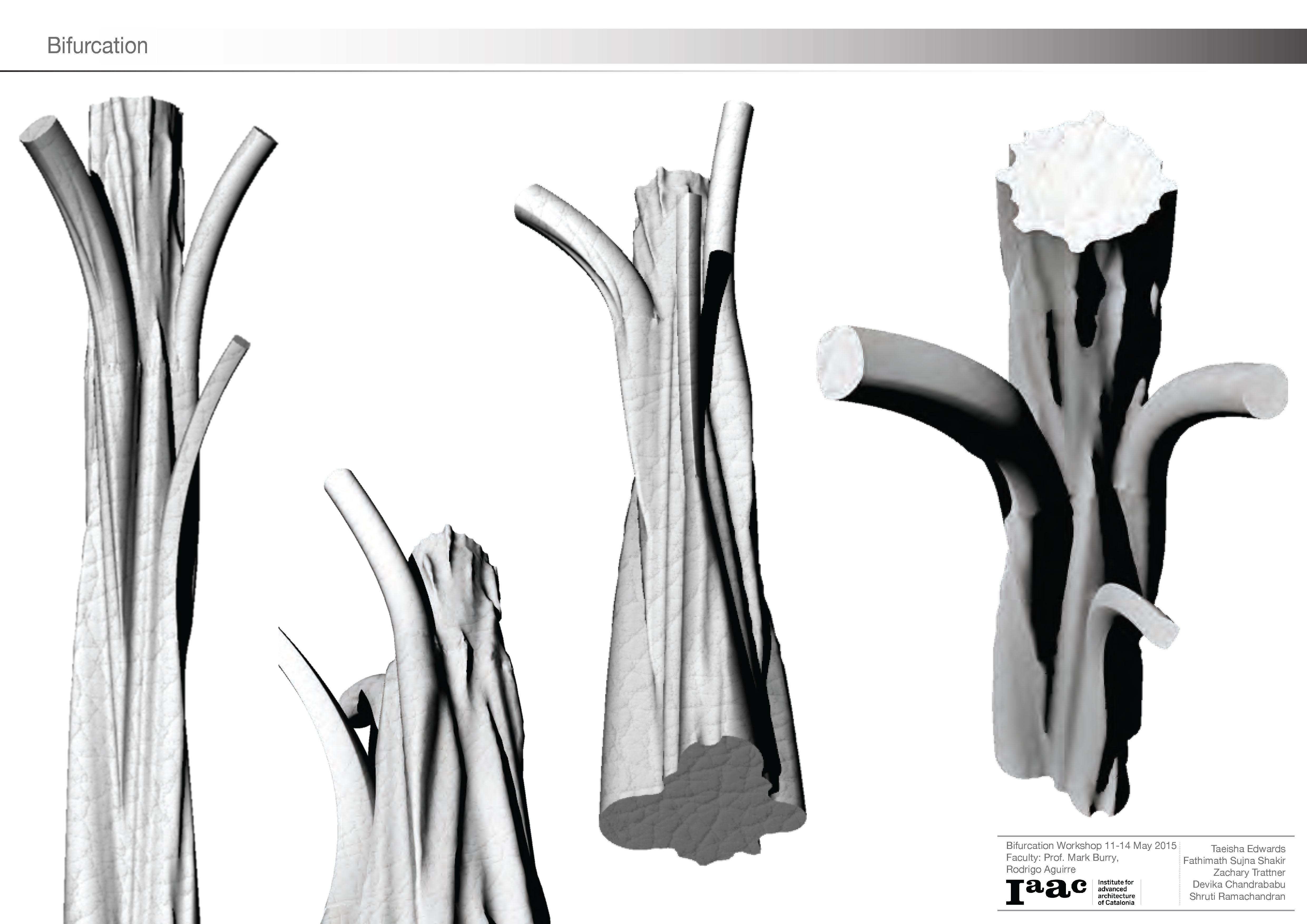 00 Presentation (suju)_Page_15